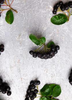 aronia bær økologisk