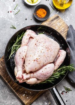 økologisk Kongeå kylling