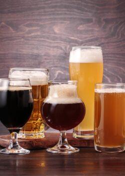 økologisk øl