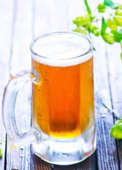 økologisk øl fra Skanderborg bryghus