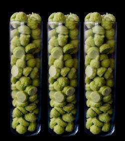 økologisk broccolipuré fra magnihill